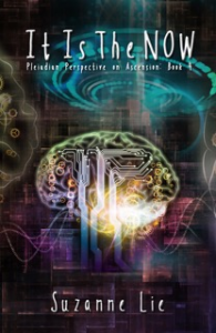 Pleiadian Perspectives Book 4